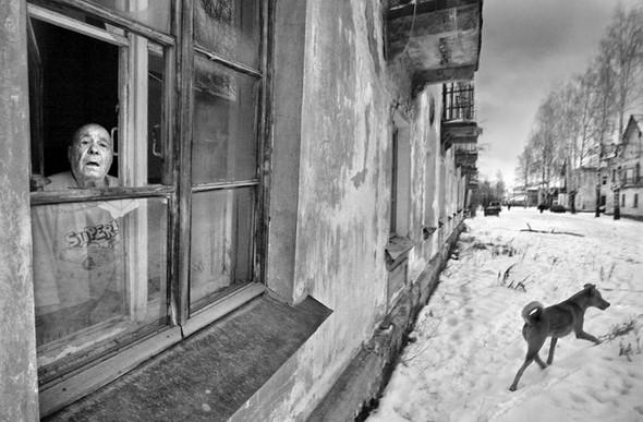 «Потрясающий город» Александра Петросяна. Изображение № 51.
