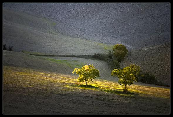 Очарованный солнцем Michele Berti. Изображение № 15.