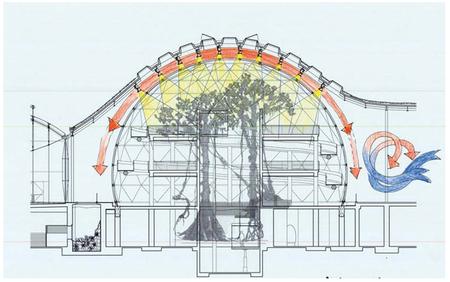 Академия подзелёным покрывалом. Изображение № 4.