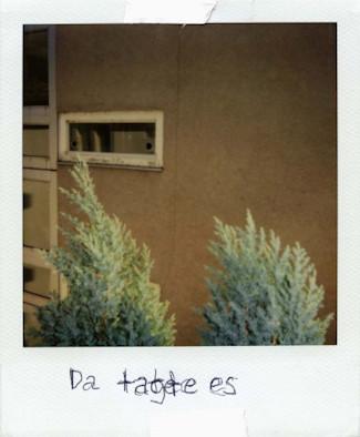 20 фотоальбомов со снимками «Полароид». Изображение №163.