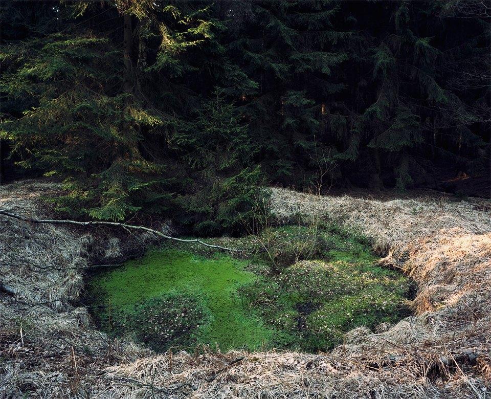 Галерея: как война изменила леса Германии. Изображение № 5.