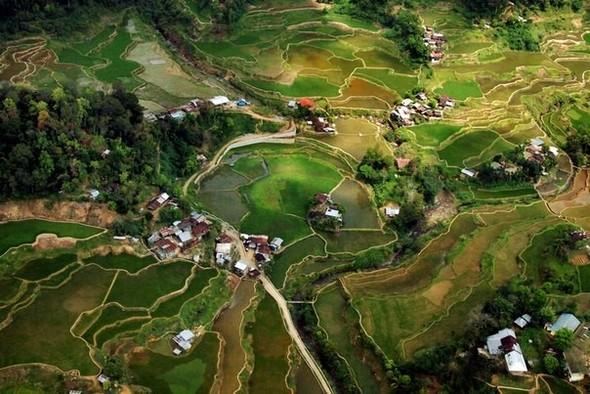 Где рис сажают тысячи лет…. Изображение № 2.