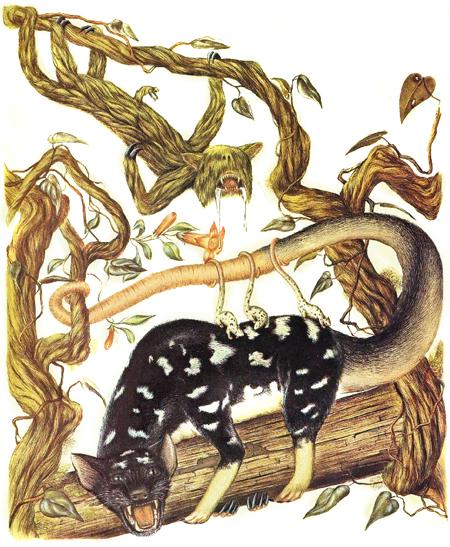 Зоология дляпутешественников вовремени. Изображение № 17.