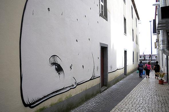Большая коллекция уличного искусства. Изображение № 19.