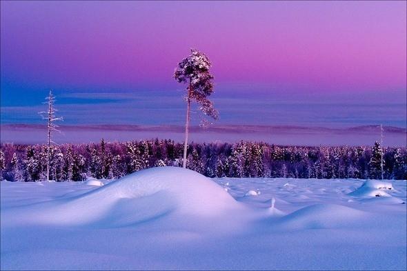 Изображение 21. Выходные в шведском лесу.. Изображение № 21.
