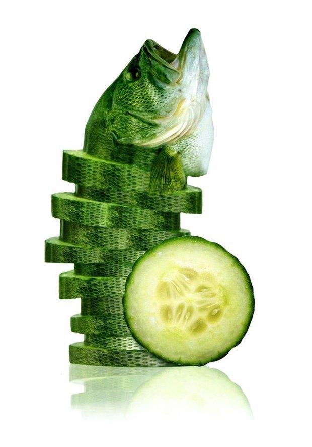 Концепт: животные в виде фруктов. Изображение № 5.
