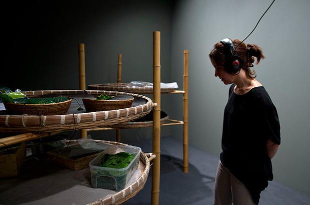 Ай Вэйвэй выступил против китайского современного искусства. Изображение № 7.