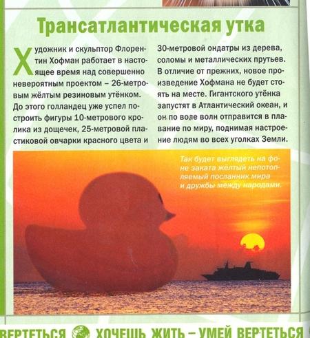 Трансатлантический утёнок. Изображение № 3.