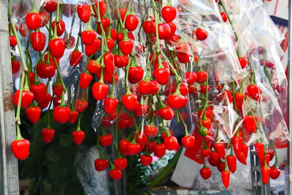 Columbia Road Flower Market/Цветочный рай. Изображение № 24.