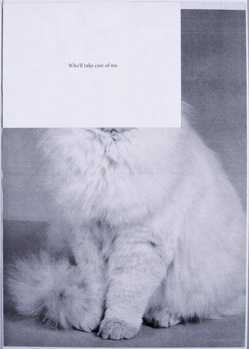 Кошка сама по себе. Изображение № 11.