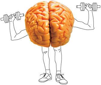 Изображение 8. Как улучшить работу вашего мозга.. Изображение № 7.