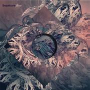 Красивые обложки для всех работ Sepalcure создает художница Сугвен Чун. Изображение № 15.