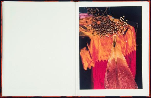 7 альбомов об абстрактной фотографии. Изображение № 56.