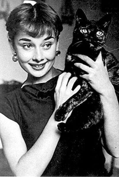 Коты и их знаменитости. Изображение № 7.