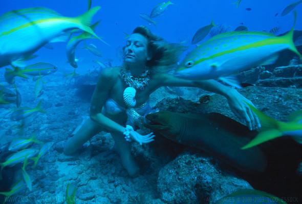 Todd Essick. Подводный мир. Изображение № 3.