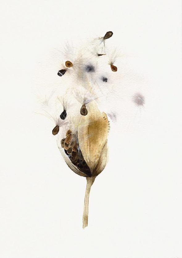 Изображение 63. Amber Alexander - животные, сияющие акварелью.. Изображение № 61.