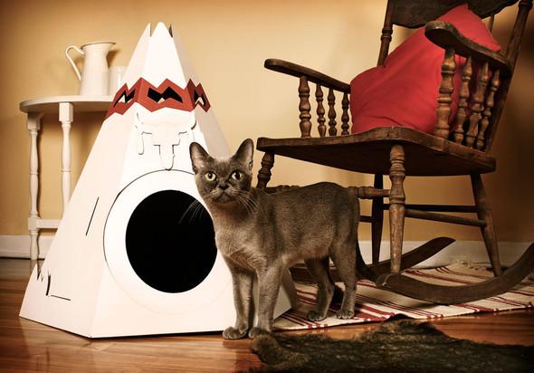 Кошачий домик из картона. Изображение № 2.