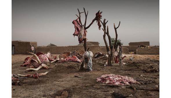 Изображение 5. Объявлены победители премии World Press Photo 2010.. Изображение № 5.