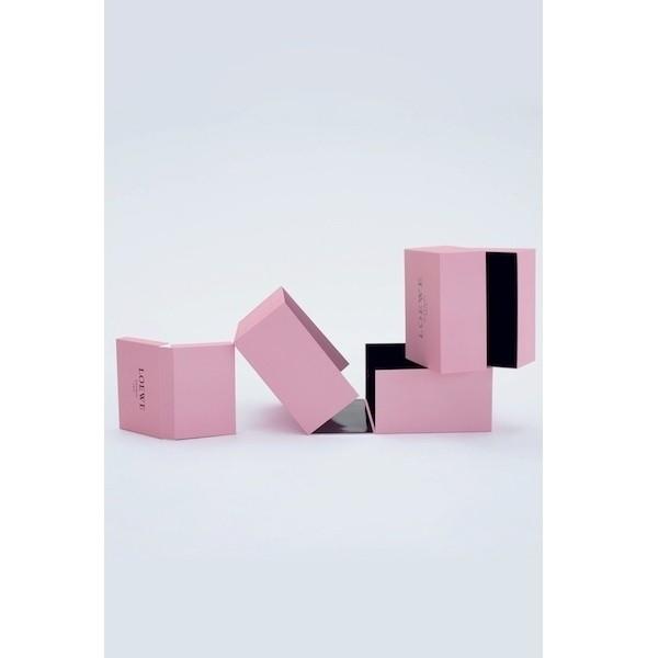 Изображение 16. Лукбук: Loewe Cherry Blossom.. Изображение № 16.
