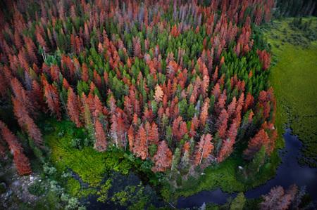 Аэрофотография отVincent Laforet. Изображение № 18.
