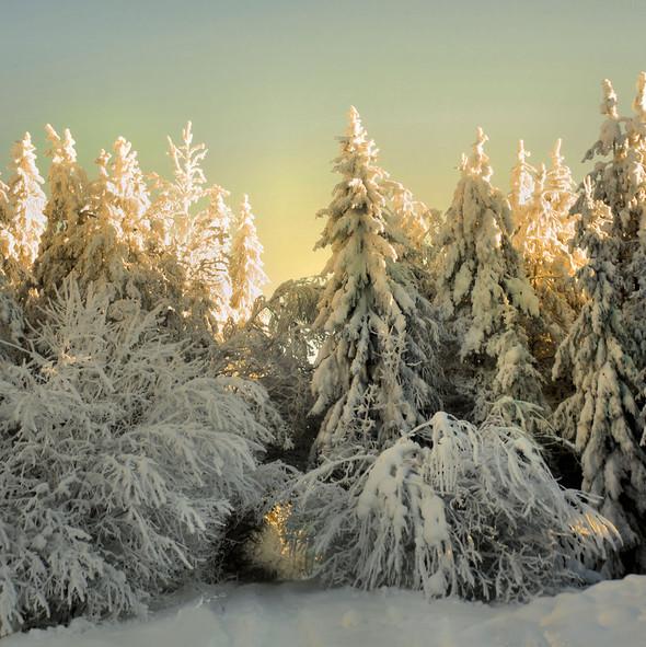 By Kари Liimatainen (самая шикарная зима). Изображение № 3.
