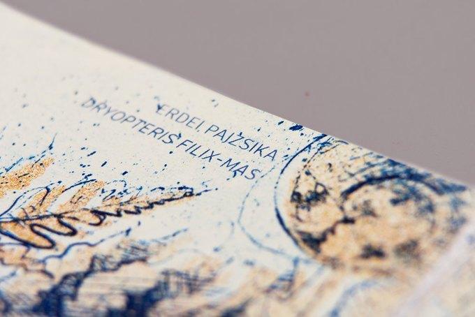 Концепт дня: банкноты несуществующих венгерских евро. Изображение № 14.