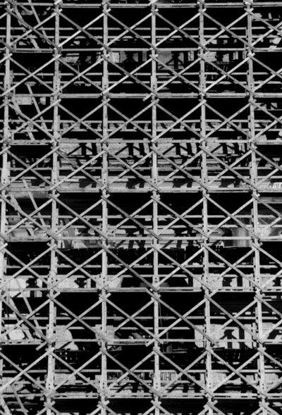 Город влесах. Выставка Мити Харшака. Изображение № 1.