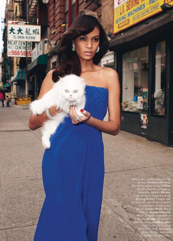 Съёмки: Playing Fashion, Schon, Vogue и другие. Изображение № 63.