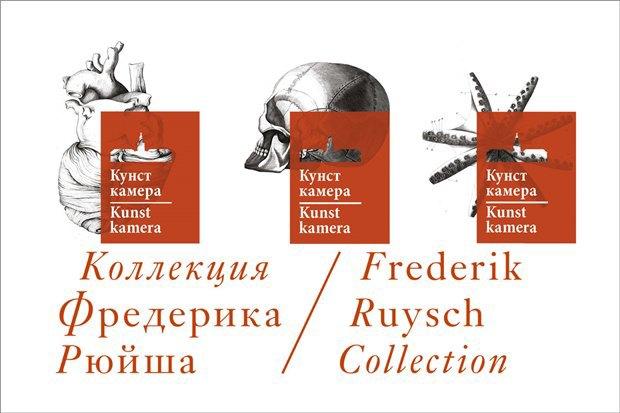 Для Кунсткамеры разработали логотип и айдентику. Изображение № 3.