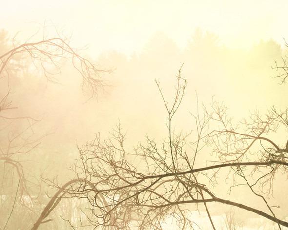 Серия задымленных фотопейзажей творческого дуэта Floto - Warner. Изображение № 6.