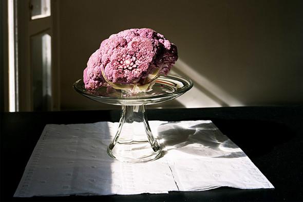 Фотография Kathryn Parker Almanas. «Неманипулированный» still life, в котором автор сознательно показывает естественность картинки. Изображение № 22.