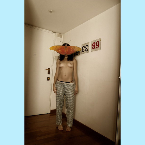 Данило Паскуале: влажный сюрреализм вдомашних условиях. Изображение № 5.