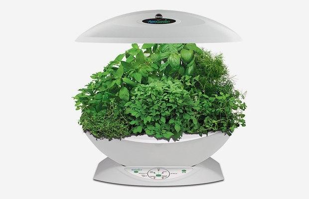8 технологичных способов выращивать еду дома. Изображение № 6.