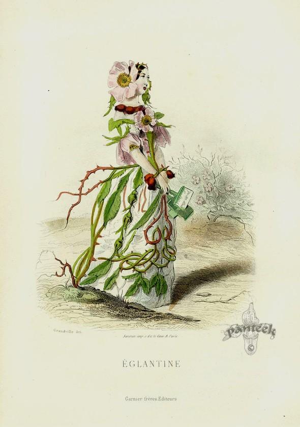 Винтажные иллюстрации J.J. Grandville. Изображение № 5.