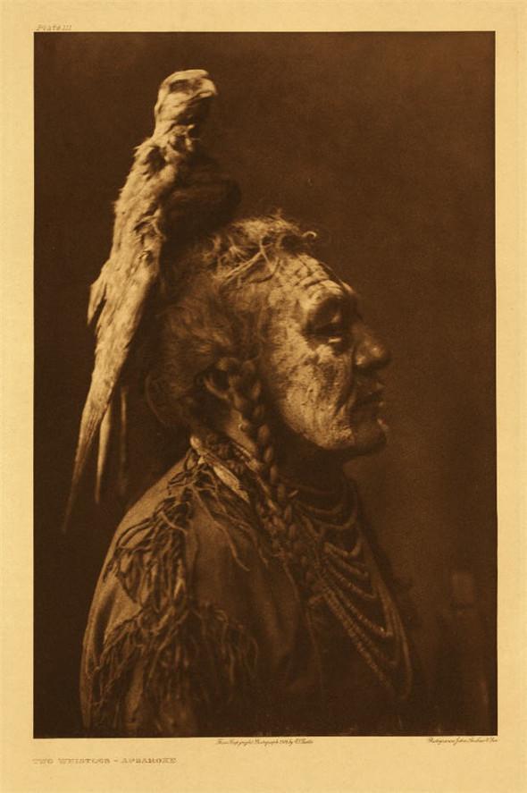 Американские индейцы. Изображение № 11.