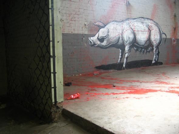 Животный стрит-арт от бельгийского граффитчика ROA. Изображение № 38.