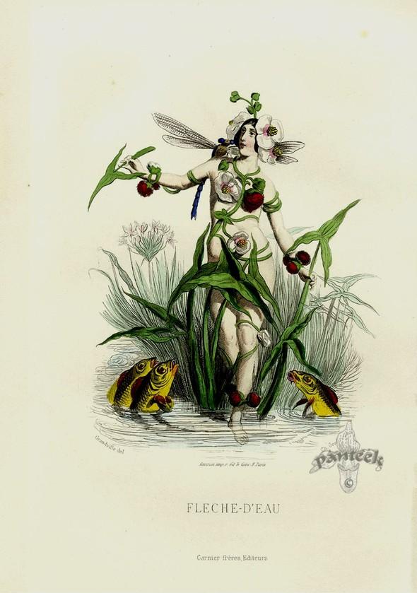 Винтажные иллюстрации J.J. Grandville. Изображение № 20.