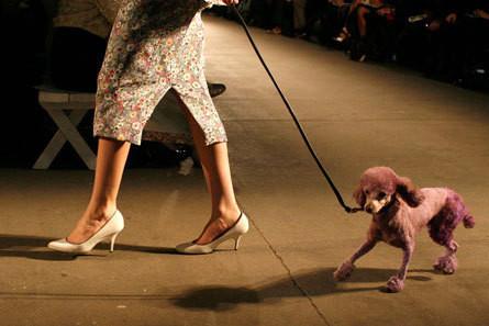 Изображение 4. Коллекция Isaac Mizrahi на Неделе моды Mercedes Benz Fashion Week 2011.. Изображение № 4.