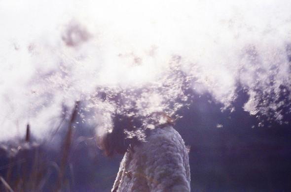 Li Hui Photography. Изображение № 19.