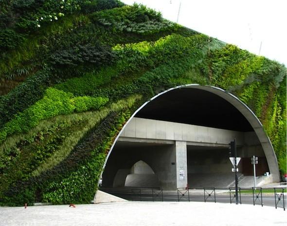 Диалог с природой: вертикальные сады. Изображение № 8.