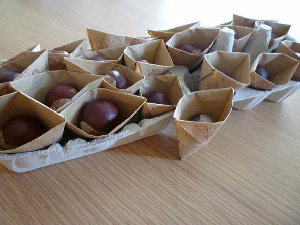 Любовь к бумаге или 1001 оригами. Изображение № 33.
