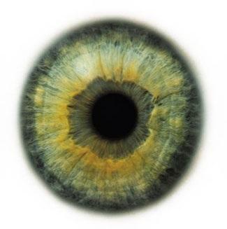 Фотограф Rankin — Eyescapes. Изображение № 17.