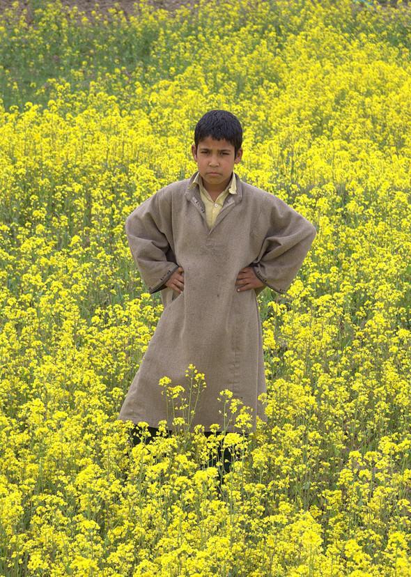Разные люди. Кашмир, Индия. Изображение № 12.