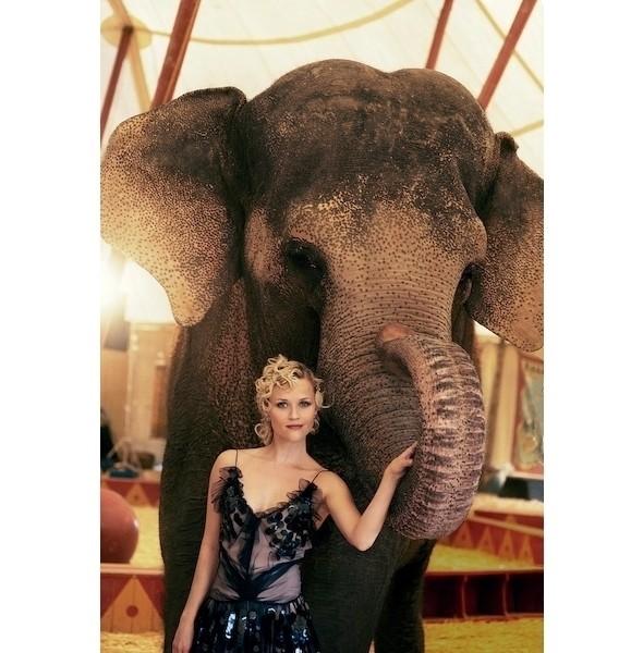 Изображение 39. Съемки: Harper's Bazaar, Marie Claire, Vogue и W.. Изображение № 39.