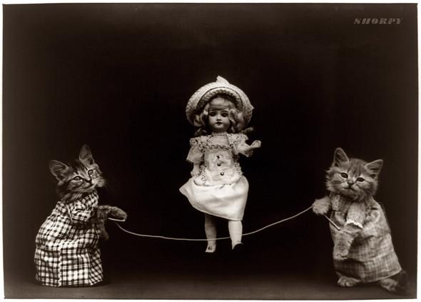 Фотографии с животными, начало прошлого века. Изображение № 1.