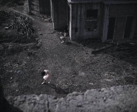 Фотографическая Грусть. Изображение № 38.