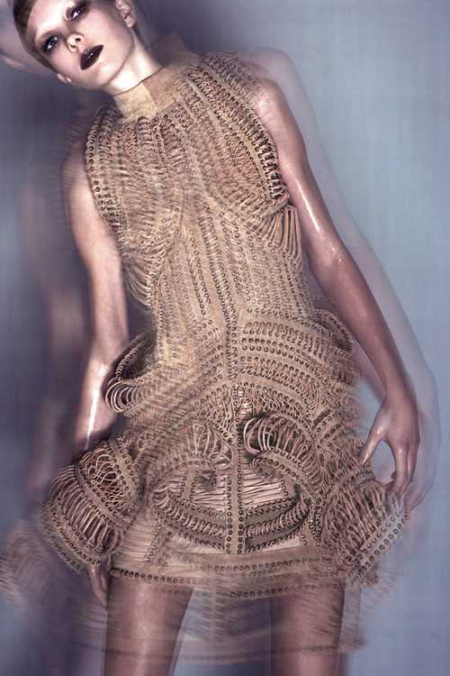 MUMMIFICATION by IRIS VAN HERPEN. Изображение № 1.