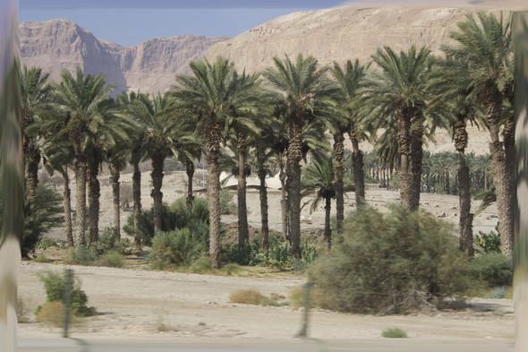 Israel. The Holy Land. Изображение № 4.
