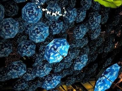 Любите ливы зонтики так, каклюблю ихя?. Изображение № 15.