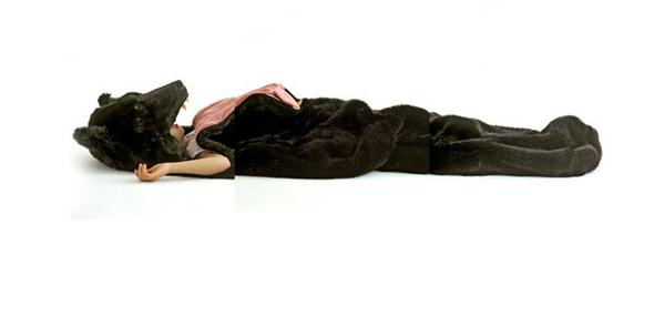 Медведь-спальник. Изображение № 1.